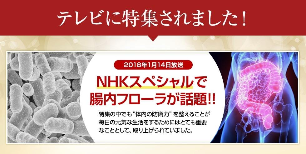 テレビに特集されました!NHKスペシャルで腸内フローラが話題!